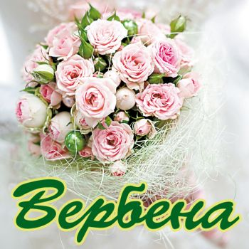 Екатеринбург цветы оригинальные